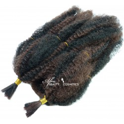Ashwaria Curl 1B/33